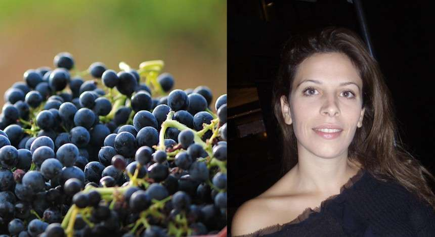 Κτήμα Πατεριανάκη, εκεί όπου το κρασί είναι αυστηρά γυναικεία υπόθεση
