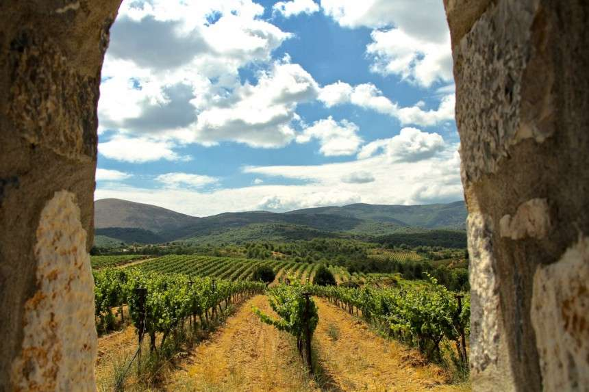 H ιστορία του Γιάννη Τσέλεπου είναι συνδεδεμένη με την άνοιξη του ελληνικού κρασιού